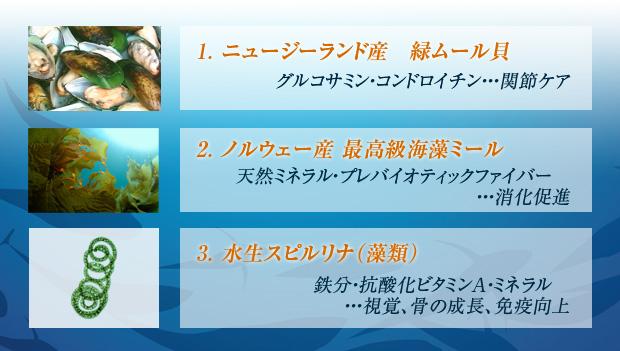 フィッシュ4ドッグ・スーペリア・緑イ貝・スピルリナ・海藻ミール